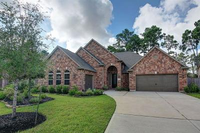 Tomball Single Family Home For Sale: 18806 Winding Atwood Lane