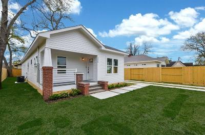 Houston Single Family Home For Sale: 125 Amundsen Street