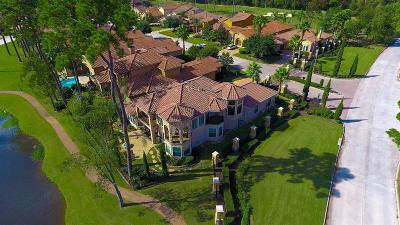 Houston Single Family Home For Sale: 3007 Serena Vista Way