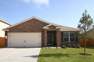 Rosenberg Single Family Home For Sale: 5014 Jagged Cliff Lane