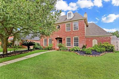 Houston Single Family Home For Sale: 4326 Brook Shadow Drive