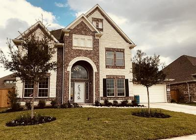 League City Single Family Home For Sale: 2342 Ashley Falls Lane