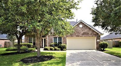 Katy Single Family Home For Sale: 28607 Hayden Park Drive