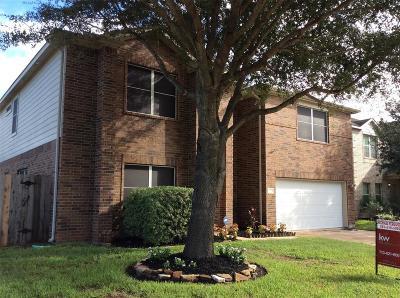 Houston Single Family Home For Sale: 9819 Lynette Falls Drive