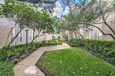 Houston Condo/Townhouse For Sale: 716 Bering Drive #30