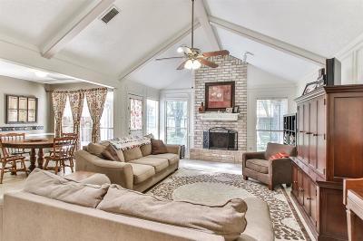 Houston Single Family Home For Sale: 6706 Castle Lane Drive