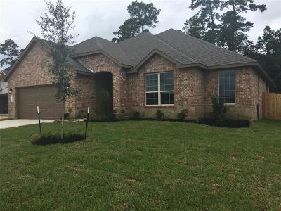 Conroe Single Family Home For Sale: 14116 Cleetwood Trail Court
