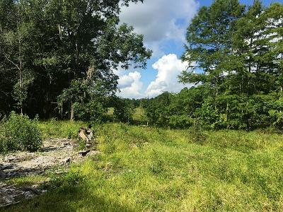 Liberty County Residential Lots & Land For Sale: 418 Road 2917