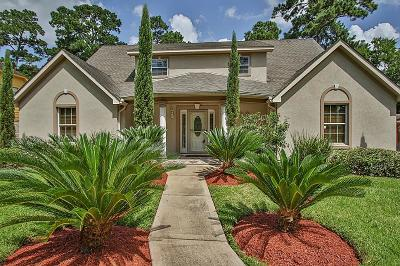 Houston Single Family Home For Sale: 718 Lodgehill Lane