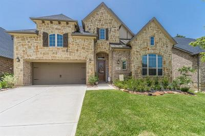 Single Family Home For Sale: 838 Evergreen Meadows Lane