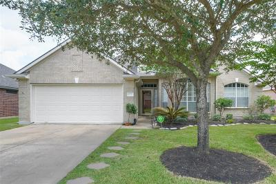 Tomball Single Family Home For Sale: 17722 Memorial Springs Drive
