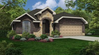 Lakes Of Savannah Single Family Home For Sale: 13814 Sandstone Bridge Lane