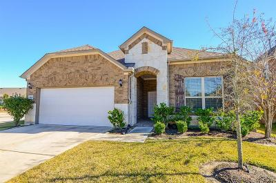Fort Bend County Single Family Home For Sale: 4303 Lasker Brook Court