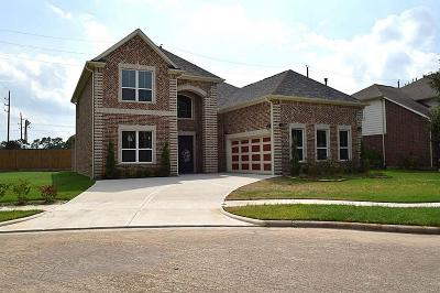 Tomball Single Family Home For Sale: 19207 Twin Buttes Drive
