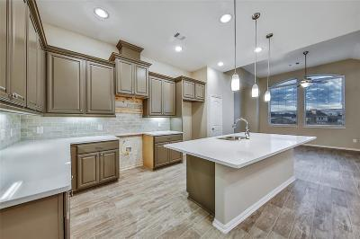 Fulshear Condo/Townhouse For Sale: 29142 Artic Brook Lane