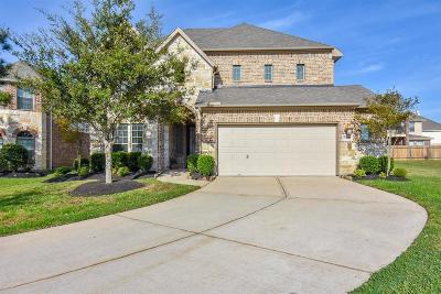 Rosharon Single Family Home For Sale: 9406 Copper Cove Lane