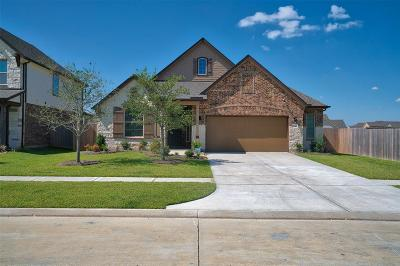 Manvel Single Family Home For Sale: 19010 Blue Valley Lane