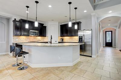 Pearland Single Family Home For Sale: 2802 Spencer Court