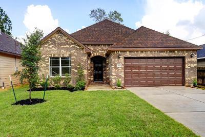 Houston Single Family Home For Sale: 8205 Grandview Street