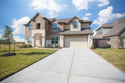 Rosharon Single Family Home For Sale: 4418 Thetford Manor Trail