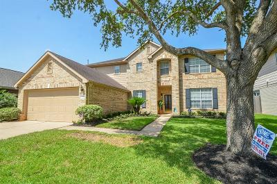 Sugar Land Single Family Home For Sale: 5503 Linden Grove Court