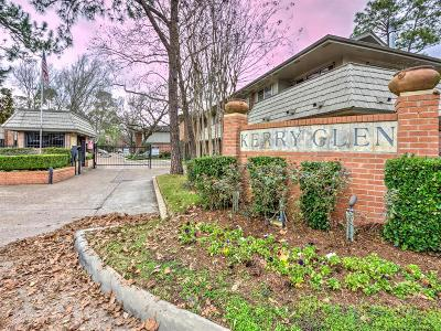 Houston TX Condo/Townhouse For Sale: $149,000