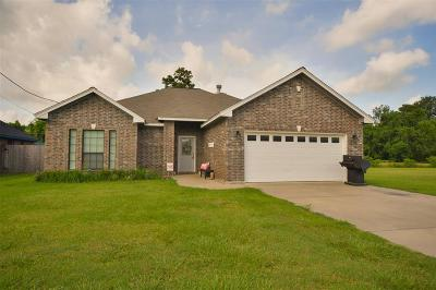 Single Family Home For Sale: 1195 Meadows Lane