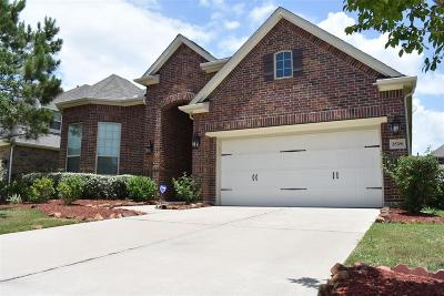 Katy Single Family Home For Sale: 28706 Maple Red Drive