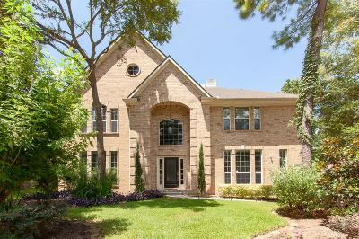 The Woodlands Single Family Home For Sale: 15 Wild Colt Place