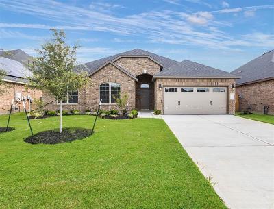 Rosenberg Single Family Home For Sale: 7911 Blue Lake Drive