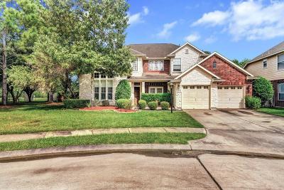 Houston Single Family Home For Sale: 13511 Pemberwick Park Lane