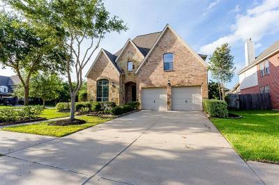 Sugar Land Single Family Home For Sale: 5103 Field Briar Lane