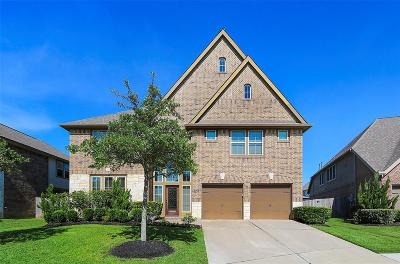 Pearland Single Family Home For Sale: 3506 Brantly Cove Court