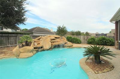 Cinco Ranch Single Family Home For Sale: 4523 Camden Brook Lane