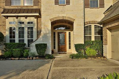 Sugar Land Single Family Home For Sale: 807 Newington Lane