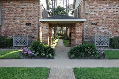 Houston Condo/Townhouse For Sale: 515 Tallowood Road #39