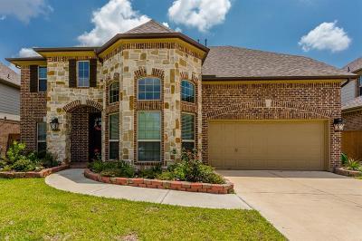 League City Single Family Home For Sale: 1605 Spiga Lane