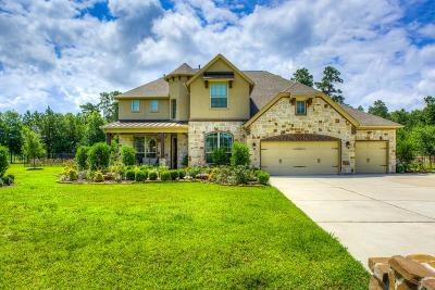 Conroe Single Family Home For Sale: 2719 Silverstone Way
