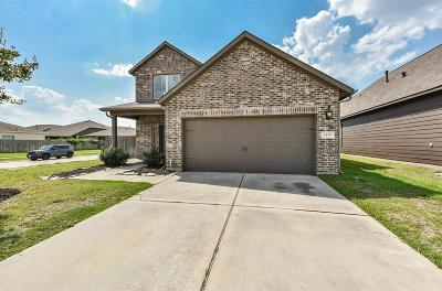 Katy Single Family Home For Sale: 2439 Grey Reef Drive