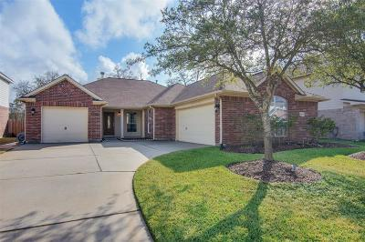 Tomball Single Family Home For Sale: 9919 Memorial Crossing Drive
