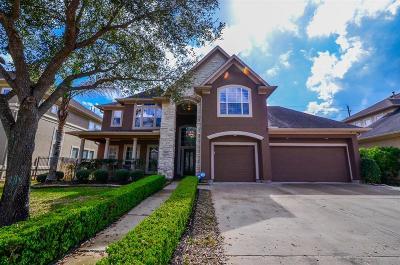 Sugar Land Single Family Home For Sale: 5227 Dawnington Place
