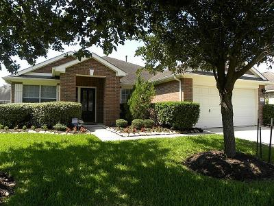 Single Family Home For Sale: 541 Small Cedar Drive Drive