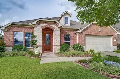 Katy Single Family Home For Sale: 4607 Decker Drive