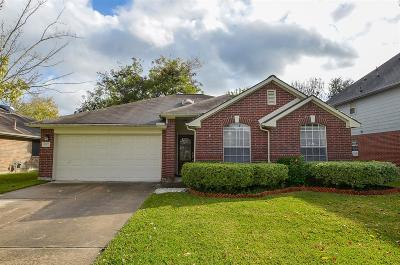 Sugar Land Single Family Home For Sale: 17007 Summer Hollow Drive