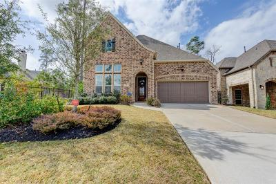 The Woodlands Single Family Home For Sale: 51 Twin Ponds Place