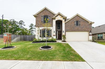 Harris County Single Family Home For Sale: 16003 Audie Lee Court