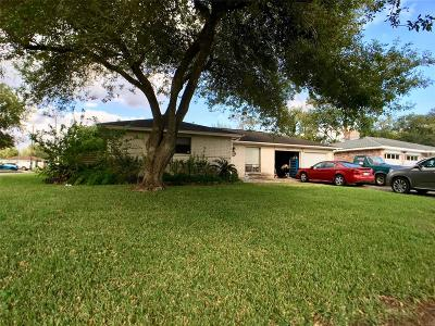 Friendswood Single Family Home For Sale: 16803 David Glen Drive