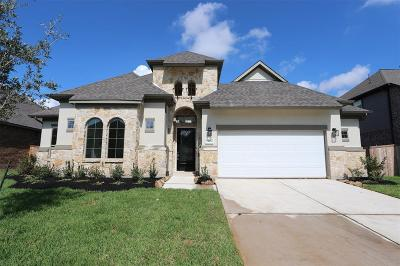 Tomball Single Family Home For Sale: 13630 Nearpoint Lane