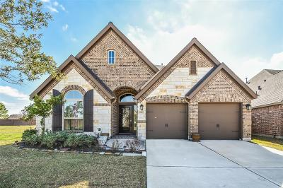 Pearland Single Family Home For Sale: 13932 Palm Ridge Lane