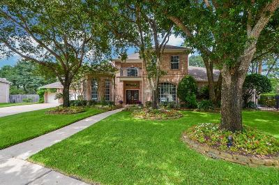Katy Single Family Home For Sale: 2003 White Eagle Lane